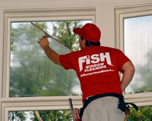 Fish Window Cleaning Cincinnati Oh Tri State Area Awning