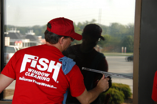 Fish window cleaning south central ct new haven for Fish window cleaning
